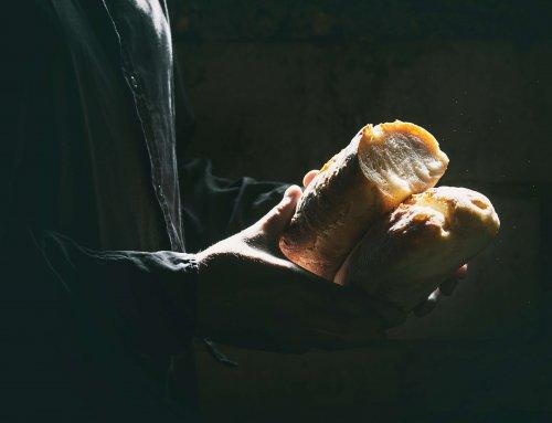 A contribuição do Nobel da Economia de 2019 e a sua importância para a Agronomia